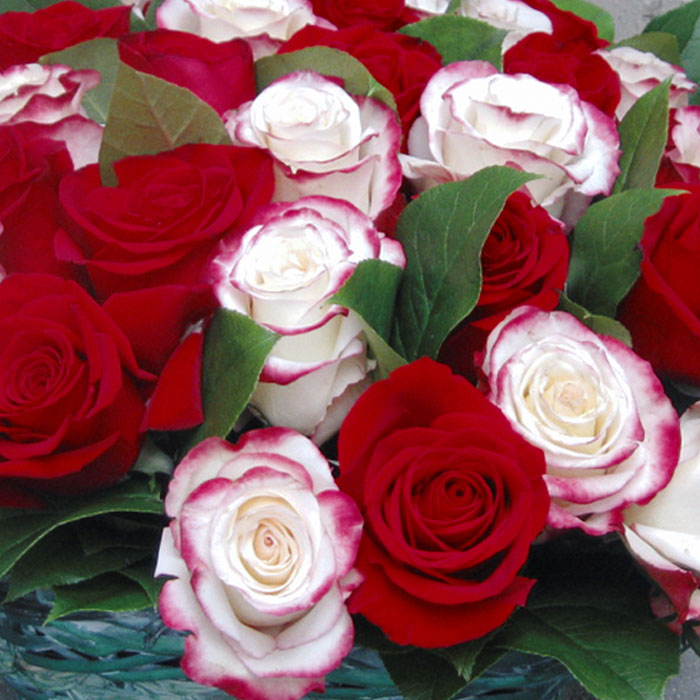 фото 2: Корзина из 31 розы
