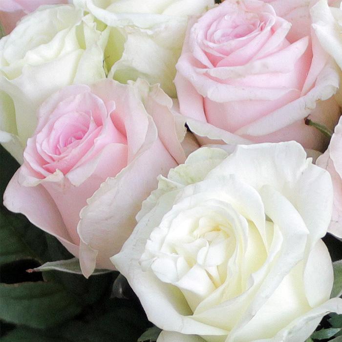 фото 1: Букет из 35 роз