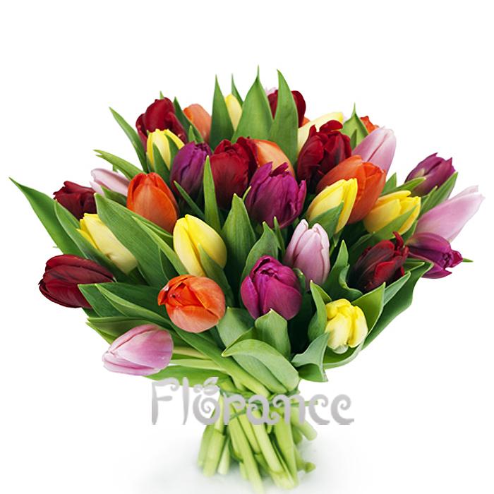 фото 2: Букет из 25 разноцветных тюльпанов