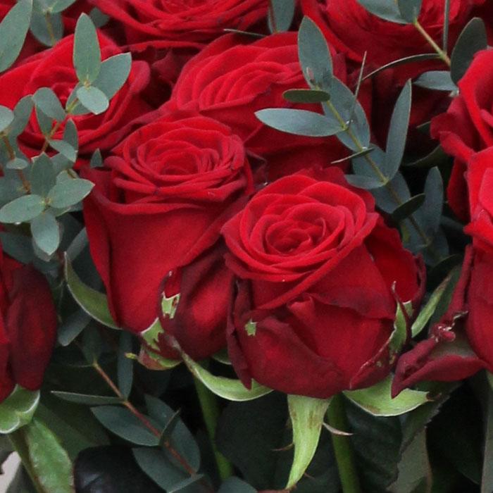 фото 2: Букет из 25 красных роз с эвкалиптом