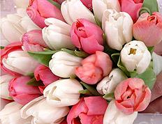 Цветы 8 марта Рогачёв