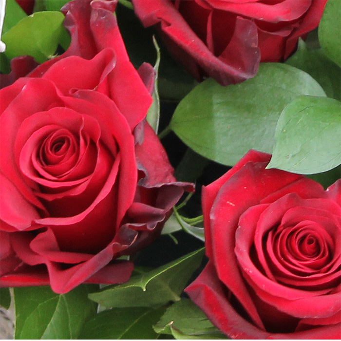 фото 1: Корзина из 17 красных роз