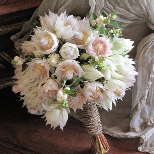 64778773_64443823_ss_bridal_bouquet__blushing_bride_protea_192