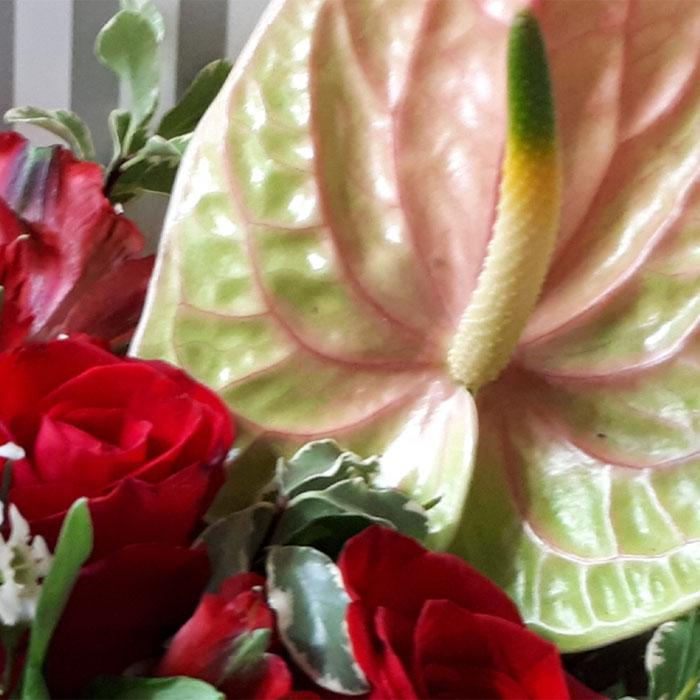 фото 1: Конверт с цветами в яркой цветовой гамме